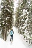 Wandelaarsneeuw die op sleep schoeien royalty-vrije stock foto's