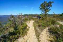Wandelend aan hemels rotsvooruitzicht, blauwe bergen, Australië 13 stock afbeeldingen