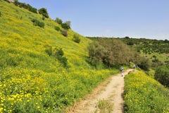 Wandelend in Galilee, Israël. Stock Afbeeldingen