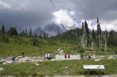 Wandelend in Mt Rainier National Park Stock Afbeeldingen