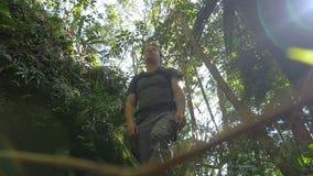 Wandelend in openlucht solo het lopen van avontuur in regenwoudwildernis stock video