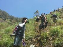 Wandelend Team In Bambarakanda Mountain stock afbeelding