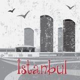 Wandelgalerij van Ä°stanbul met vogels Royalty-vrije Stock Afbeelding