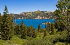 Wandeling aan Marlette-Meer in Meer Tahoe stock foto's