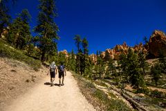 Wandeling in Bryce Cannyon royalty-vrije stock foto