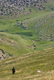 Wandeling in de heuvels Stock Afbeeldingen