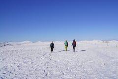 Wandeling in de sneeuw Stock Foto's