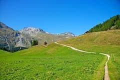 Wandeling in de Zwitserse alpen Stock Foto