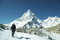 Wandeling in Himalayan Royalty-vrije Stock Foto