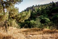 Wandeling in Kreta royalty-vrije stock foto's