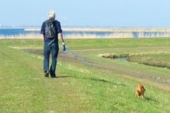 Wandeling met hond Royalty-vrije Stock Foto
