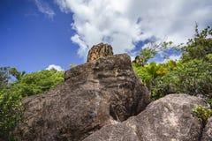 Wandeling op Seychellen 1 royalty-vrije stock fotografie