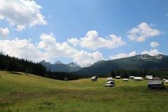 Wandeling in Slovenië/Vallei met Mening stock foto