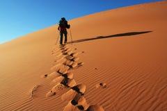 Wandeling in woestijn stock afbeeldingen