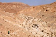 Wandeling in Woestijn Negev stock foto