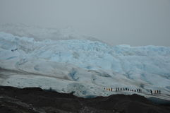 Wandelingsgletsjer Moreno Royalty-vrije Stock Foto's