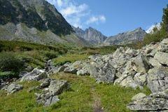 Wandelingssleep in een rand van Barguzinsky van de bergvallei bij Meer Baik Royalty-vrije Stock Foto's