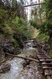 Wandelingssleep over rivier in Slowaaks Paradijs Nationaal Park, Slo royalty-vrije stock afbeelding
