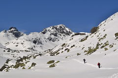 Wandelingssleep in sneeuw in bergen in een zonnige dag Stock Foto's