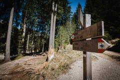 Wandelingsslepen in het Dolomiet Stock Fotografie
