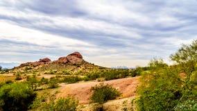 Wandelingsslepen rond rood zandsteenbuttes van Papago-Park dichtbij Phoenix Arizona Royalty-vrije Stock Foto's