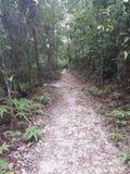 Wandelingsspoor in Taman Neagara Maleisië royalty-vrije stock afbeelding