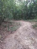 Wandelingsspoor in Taman Neagara Maleisië stock fotografie