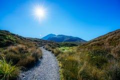 Wandelingstongariro alpiene kruising, vulkaanmt ngauruhoe, nieuwe zealan Royalty-vrije Stock Foto