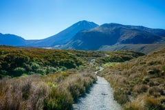 Wandelingstongariro alpiene kruising, vulkaanmt ngauruhoe, nieuwe zealan Royalty-vrije Stock Foto's