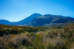 Wandelingstongariro alpiene kruising, vulkaanmt ngauruhoe, nieuwe zealan Royalty-vrije Stock Afbeeldingen