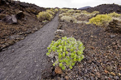 Wandelingsvoetpad in mooi rotsachtig vulkanisch bergenlandschap, Royalty-vrije Stock Foto