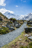 Wandelingsweg om Cook, Nieuw Zeeland op te zetten stock afbeelding