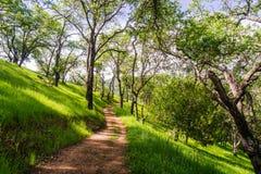 Wandelingsweg op de heuvels van de onlangs geopende Rancho San Vicente Open Space Preserve, een deel van Calero-het Park van de P stock afbeelding