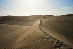 Wander around and beeing lost on sandy dunes in desert Royalty Free Stock Image