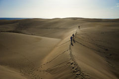 Wander around and beeing lost on sandy dunes in desert Royalty Free Stock Photography