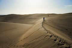 Wander around and beeing lost on sandy dunes in desert Stock Photography