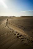Wander around and beeing lost on sandy dunes in desert Royalty Free Stock Photo