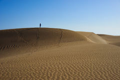 Wander arround and beeing lost on sandy dunes in desert Royalty Free Stock Photo