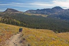 Wanderer auf Carson-Durchlauf Lizenzfreie Stockbilder