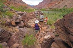 Wanderer auf einer Spur durch den Colorado in Grand Canyon stockfoto