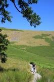Wanderer auf Gebirgsfußweg am heißen, sonnigen Tag Stockbild