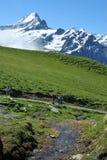 Wanderer in den Schweizer Bergen Lizenzfreies Stockfoto