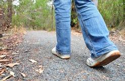 Wanderer, der auf Spur im Busch auf Berg geht Lizenzfreies Stockfoto