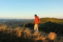 Wanderer, der die Ansicht einläßt Stockfotografie