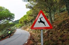 Wanderer, der entlang eine Gebirgsstraße, Zeichen von wilden Tieren geht Lizenzfreies Stockbild
