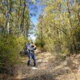 Wanderer, der Fotos in einem Wald macht Lizenzfreie Stockfotos