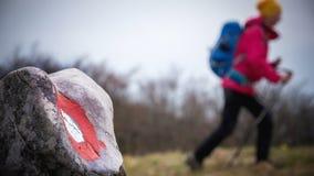 Wanderer, der im Berg wandert Lizenzfreie Stockfotografie