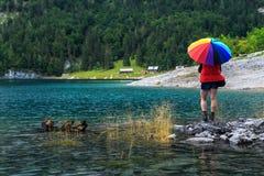 Wanderer der jungen Frau, der auf den Steinen, Gosausee, Salzkammergut, Österreich steht Stockbild
