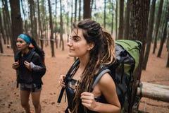 Wanderer der jungen Frau, der Trekking in Holz genießt lizenzfreies stockfoto