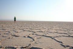 Wanderer in der Wüste Stockbild